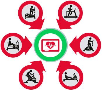 Cardio-Training für Gesundheit und Vitalität - Das Training für Zuhause