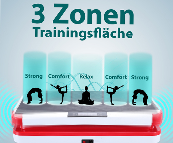 3 Zonen Trainingsfläche