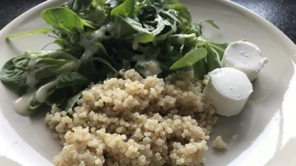 quinoa-mit-rucola-feldsalat-und-ziegenfrischkaese