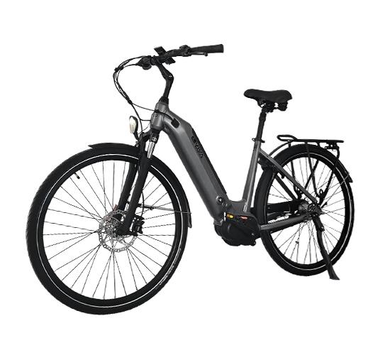 E-Bike mit Fahrunterstützung