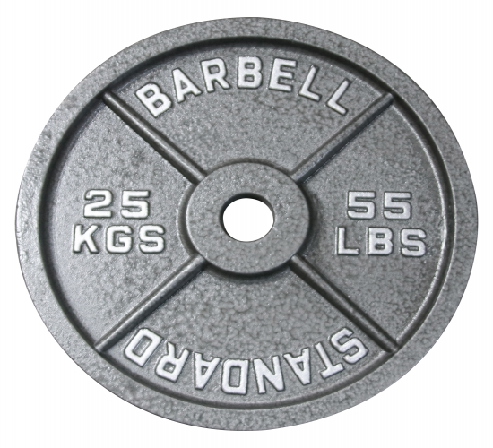 25 kg Hantelscheibe AsVIVA