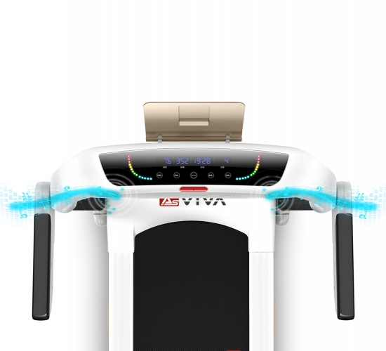 AsVIVA T21 Lautsprecher